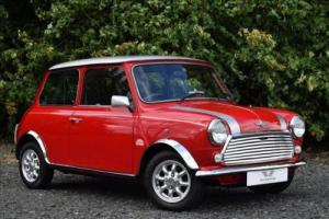 Rover Mini Photo