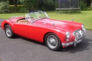 1956 MGA Roadster 1500 Photo