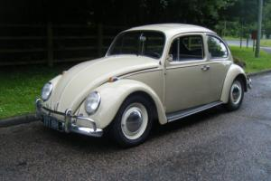 1967 vw classic beetle very rare factory sunroof edition