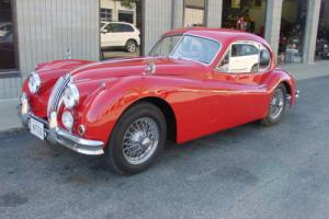 1955 Jaguar XK Photo