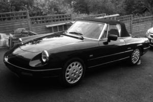 Alfa Romeoo Spider Photo