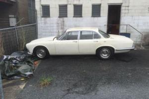 Jaguar Daimler Rare 2 8 SWB Only 3233 Ever Produced in QLD Photo