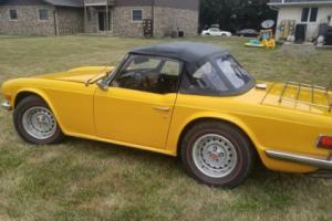 1976 Triumph TR-6 TR6 Photo