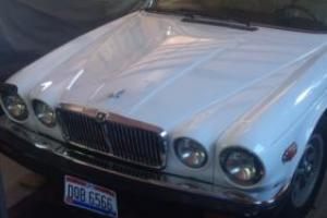 1983 Jaguar XJ6 Photo