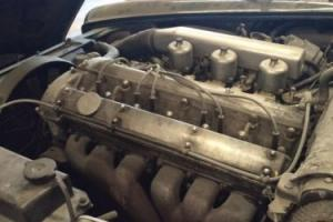 E TYPE 4.2 Jaguar Engine IN SPAIN Photo