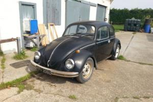 CLASSIC VW BEETLE Photo