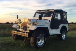 1980 Jeep Other Photo