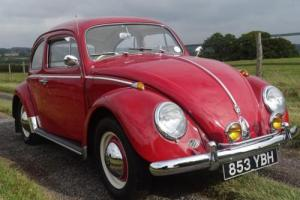 Simply Stunning 1962 Volkswagen Beetle 1200, original RHD UK car.