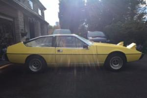 Lotus Eclat for Sale