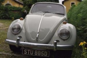 Classic VW beetle deluxe 1966 1.3 39900 original miles 1 previous owner from new