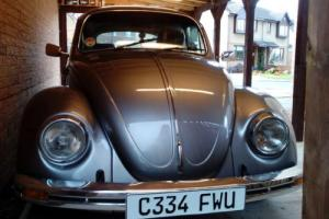 Super rare 50 year jahre kafer VW beetle for sale