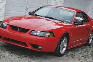 1999 Ford Mustang Svt