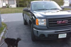2009 GMC Sierra 1500 Reg Cab Work Truck Photo