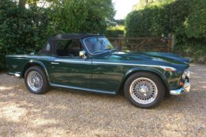 Triumph TR5 1968 Photo