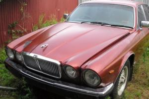 1985 Jaguar Sovereign sedan cheap