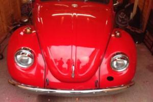 vw beetle 1970 t1 recent re spray 8L of paint