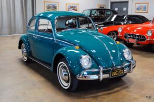 1964 Volkswagen Beetle-New Photo