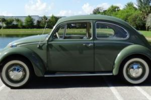 1966 Volkswagen Beetle-New Bug