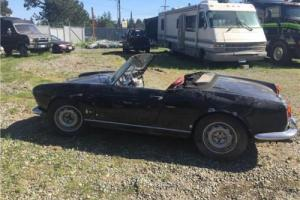 1962 Alfa Romeo Giulietta Spider for Sale