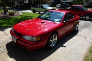 1997 Ford Mustang Cobra Photo