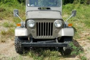1978 Willys Photo