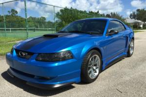 2000 Ford Mustang ROUSH Photo