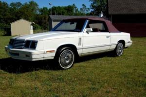 1982 Dodge Other Convertible Photo
