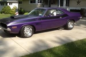 1970 Dodge Challenger Photo