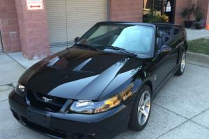 2003 Ford Mustang SVT
