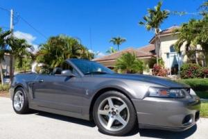 2003 Ford Mustang SVT Cobra 10th Anniv