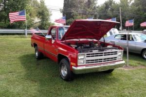 1987 Chevrolet Other Pickups R/V 10 Series