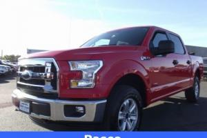2015 Ford F-150 XLT Photo