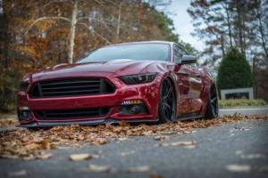 2015 Ford Mustang PP