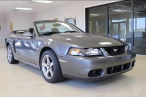 2003 Ford Mustang SVT Cobra Photo