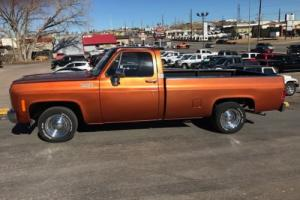 1980 Chevrolet Other Pickups