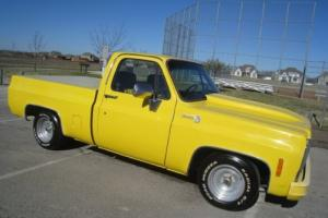 1979 Chevrolet C-10 Short Bed