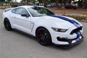2017 Ford Mustang Shelby GT350R Photo