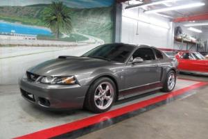"2003 Ford Mustang ""Premium Mach 1"""
