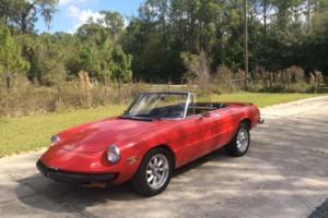 1982 Alfa Romeo Spider Photo