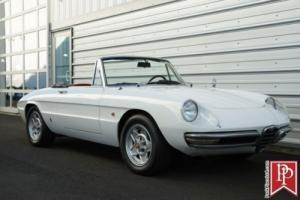 1967 Alfa Romeo Duetto Spider Photo