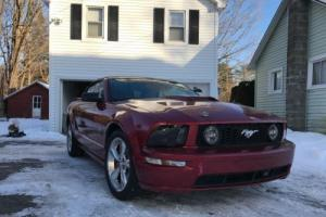 2006 Ford Mustang GT Photo