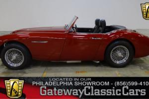 1958 Austin Healey 100-6 Nasty Boy Photo