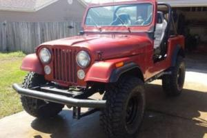 1979 Jeep CJ Base