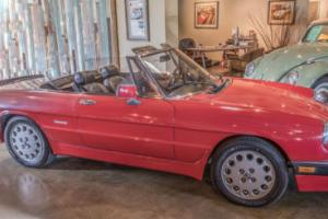 1986 Alfa Romeo Spider Photo