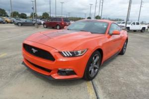 2016 Ford Mustang Fastback Rear Cam