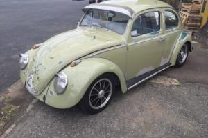 1959 vw project collector drag show