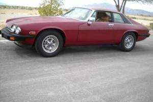 1979 Jaguar XJS Photo