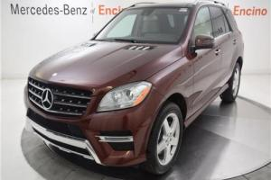 2014 Mercedes-Benz M-Class ML350 Photo