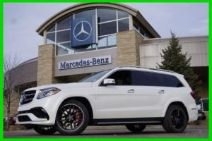 2017 Mercedes-Benz GL-Class Photo