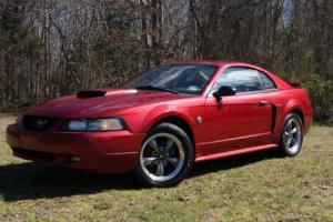 2004 Ford Mustang GT-5 Speed